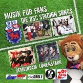 Musik für Fans (Die BSC Stadion Songs) von Various Artists