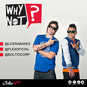 Why Not by Los Rabanes