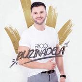 Buzinadela von Rico