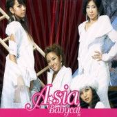 Baby Cat de Asia