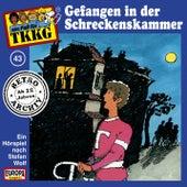 043/Gefangen in der Schreckenskammer von TKKG Retro-Archiv