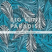 Big Tune Paradise - The Hard Selection, Vol. 1 by Various Artists