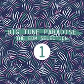 Big Tune Paradise - The EDM Selection, Vol. 1 by Various Artists