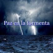 Paz en la tormenta de Various Artists