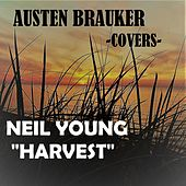 Harvest by Austen Brauker