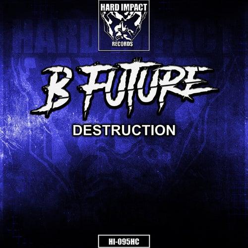 Destruction by B-Future
