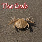 The Crab von Lucy Williams