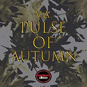 Pulse of Autumn by Various Artists
