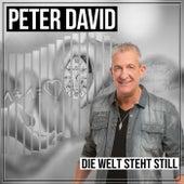 Die Welt steht still von Peter David