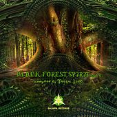 Black Forest Spirit, Vol. 5 by Various Artists
