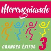 Merenguiando 3 (Grandes Éxitos) de Various Artists