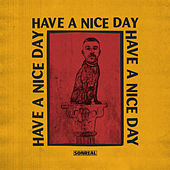 Have a Nice Day by Sonreal