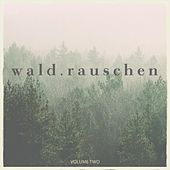 Waldrauschen, Vol. 2 (Fantastic Selection Of Melodic Dream Away Deep House Tunes) by Various Artists