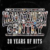 20 Years of Hits van Montgomery Gentry