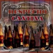 Las 30 Mejores Canciones de Despecho y Cantina de Juan Carlos Hurtado