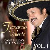 Rancheras de Cantina (Vol. 1) de Fernando Valente
