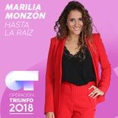 Hasta La Raíz (Operación Triunfo 2018) de Marilia Monzón