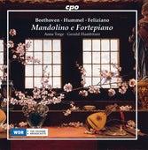 Mandolino e fortepiano von Anna Torge