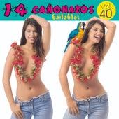 14 Cañonazos Bailables, (Vol. 40) de Various Artists
