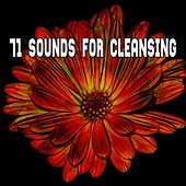 71 Sounds For Cleansing by Classical Study Music (1)