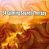 54 Calming Sounds Therapy von Massage Therapy Music