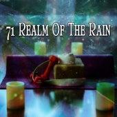 71 Realm Of The Rain von Entspannungsmusik