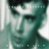 Qualquer de Arnaldo Antunes