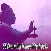 55 Charming Tranquility Tracks von Entspannungsmusik