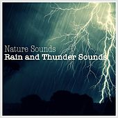 Rain and Thunder Sounds by Nature Sounds (1)