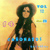 14 Cañonazos Bailables (Vol. 12) de Various Artists