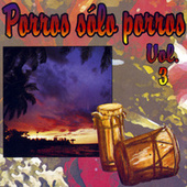 Porros, Sólo Porros (Vol. 3) de Various Artists