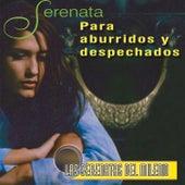 Serenata para Aburridos y Despechados: las Serenatas del Milenio de Various Artists