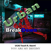 You Are My Destiny by UCAS Touch
