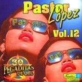 30 Pegaditas de Oro (Volumen 12) de Pastor Lopez