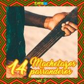 14 Machetazos Parranderos (Volumen 9) de Various Artists