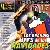 Recordando y Añorando: Los Grandes Hits de las Navidades de Various Artists