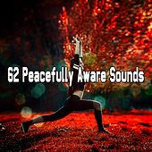 62 Peacefully Aware Sounds von Lullabies for Deep Meditation
