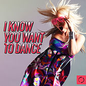 I Know You Want to Dance by Various Artists