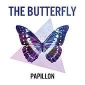 Papillon by Butterfly