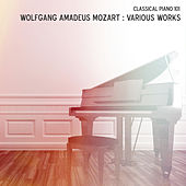 Wolfgang Amadeus Mozart: Various Works by Classical Piano 101