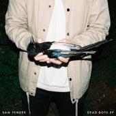 Dead Boys - EP by Sam Fender