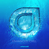 Enhanced Chill, Vol. 5 - EP von Various Artists