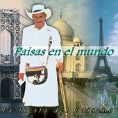 Paisas en el Mundo: la Fiesta del Paisano de Various Artists