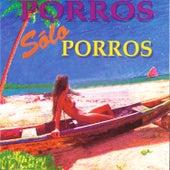 Porros, Sólo Porros de Various Artists