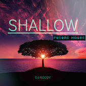 Shallow (Future Bass) (Future House) by DJ Roody