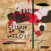 Citizen In The Wild von Ray Moore