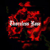 Thornless rose by Grade