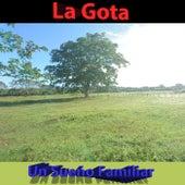 Un Sueño Familiar by Gota