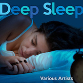Deep Sleep Playlist by Various Artists