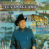 Grandes Éxitos en la Voz de el Canaguaro Antonio Villanueva de Antonio Villanueva El Canaguaro